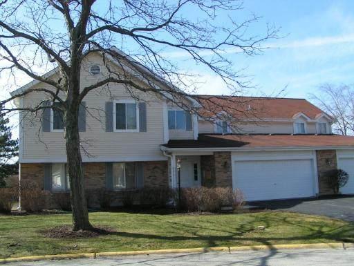 425 Sandpiper Court B, Aurora, IL 60504 (MLS #11161383) :: Suburban Life Realty
