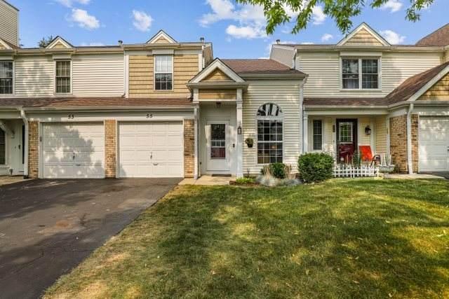 55 Marion Lane, Streamwood, IL 60107 (MLS #11163250) :: Suburban Life Realty