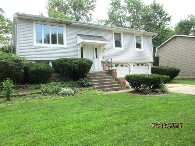 20157 S Holly Lane, Frankfort, IL 60423 (MLS #11164422) :: Suburban Life Realty