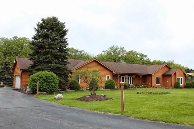 19539 W Pedersen Drive, Antioch, IL 60002 (MLS #11166131) :: O'Neil Property Group