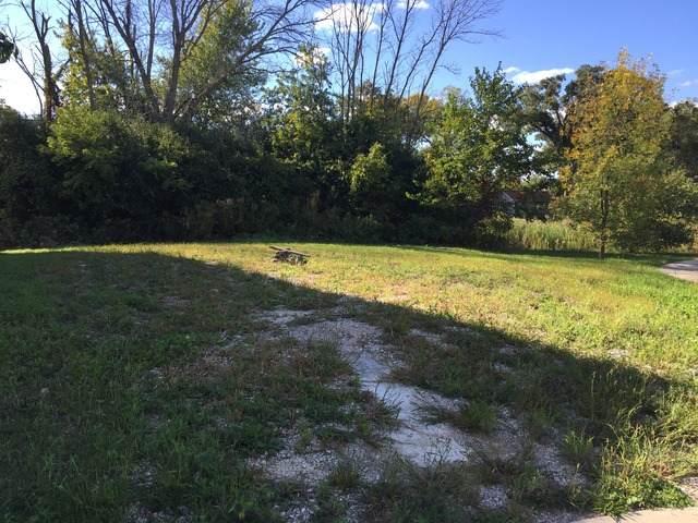 18229 W Banbury Drive, Gurnee, IL 60031 (MLS #11167558) :: Carolyn and Hillary Homes