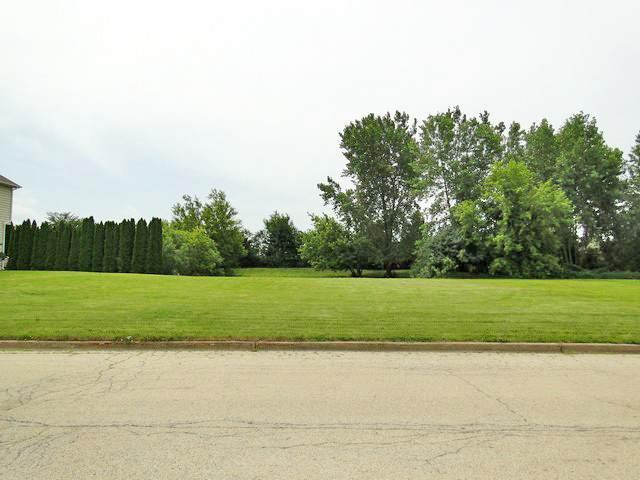 12135 Oakcrest Drive, Huntley, IL 60142 (MLS #11167630) :: Carolyn and Hillary Homes