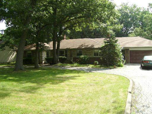 12405 S 80th Avenue, Palos Park, IL 60464 (MLS #11167998) :: The Wexler Group at Keller Williams Preferred Realty