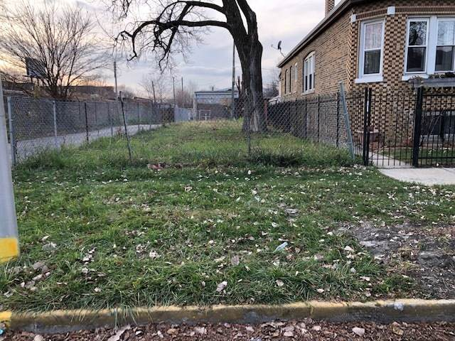 1804 N Harding Avenue, Chicago, IL 60647 (MLS #11168739) :: O'Neil Property Group