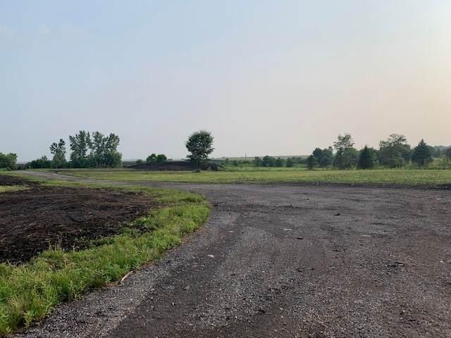 1451 Johnson Road, Oswego, IL 60543 (MLS #11168965) :: The Dena Furlow Team - Keller Williams Realty