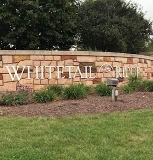 6116 Whitetail Ridge Drive, Yorkville, IL 60560 (MLS #11170691) :: Littlefield Group