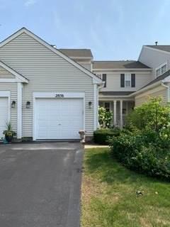 2856 Gypsum Circle #2856, Naperville, IL 60564 (MLS #11172402) :: Ryan Dallas Real Estate