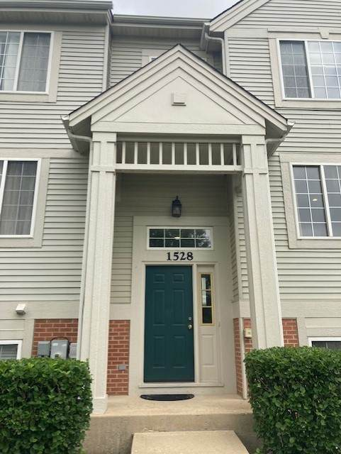 1528 New Haven Drive, Cary, IL 60013 (MLS #11173070) :: Touchstone Group