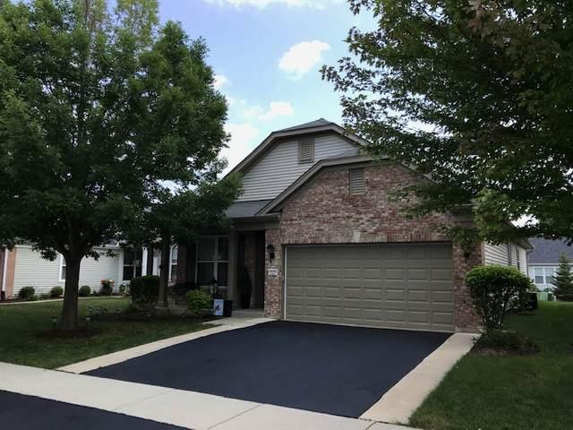 2525 Harvest Valley, Elgin, IL 60124 (MLS #11175210) :: John Lyons Real Estate