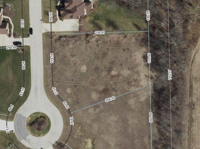 6412 Ravine Court, Yorkville, IL 60560 (MLS #11176997) :: Carolyn and Hillary Homes