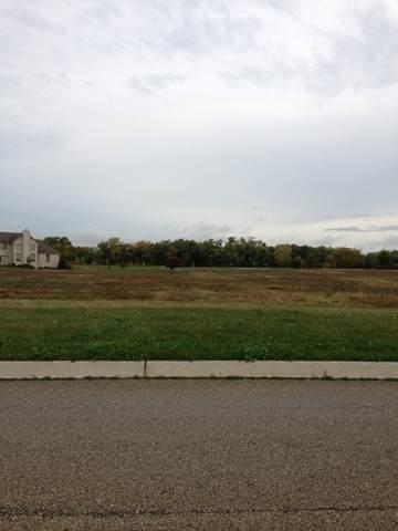 3040 Briar Drive, Spring Grove, IL 60081 (MLS #11177920) :: Charles Rutenberg Realty