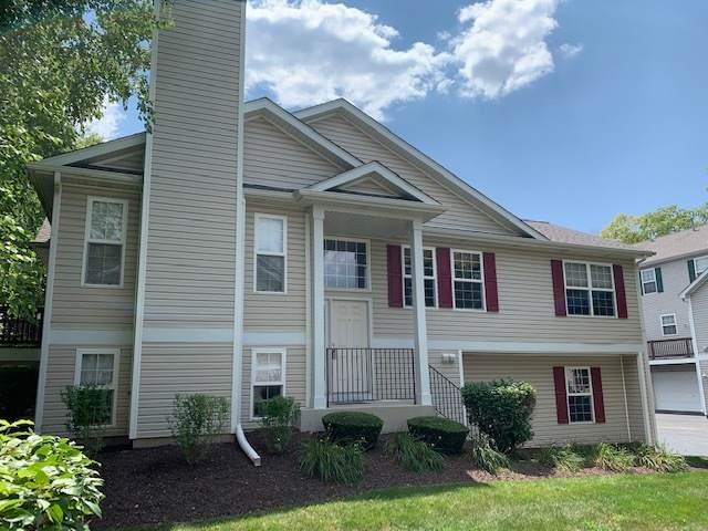 3561 Tyler Drive #3561, Joliet, IL 60431 (MLS #11178388) :: Carolyn and Hillary Homes