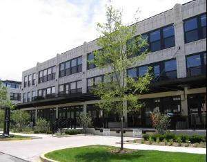 1150 W 15th Street #208, Chicago, IL 60608 (MLS #11186865) :: The Wexler Group at Keller Williams Preferred Realty