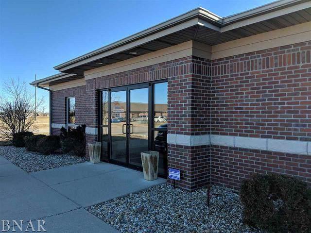 1713 Tullamore Avenue, Bloomington, IL 61704 (MLS #11207864) :: Littlefield Group