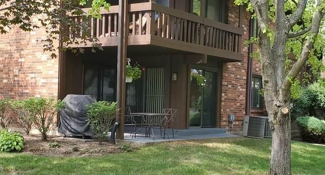 3111 Toulon Drive 1C, Northbrook, IL 60062 (MLS #11213883) :: Ryan Dallas Real Estate