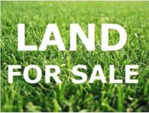 271 S Prospect Avenue, Elmhurst, IL 60126 (MLS #11215715) :: Angela Walker Homes Real Estate Group