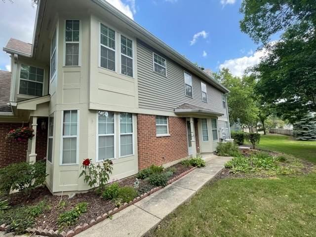 2111 Camden Lane #2111, Hanover Park, IL 60133 (MLS #11216419) :: John Lyons Real Estate
