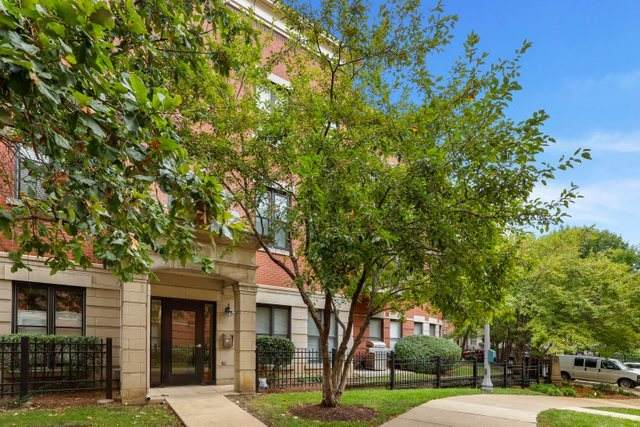 812 W College Parkway 3A, Chicago, IL 60608 (MLS #11217273) :: John Lyons Real Estate