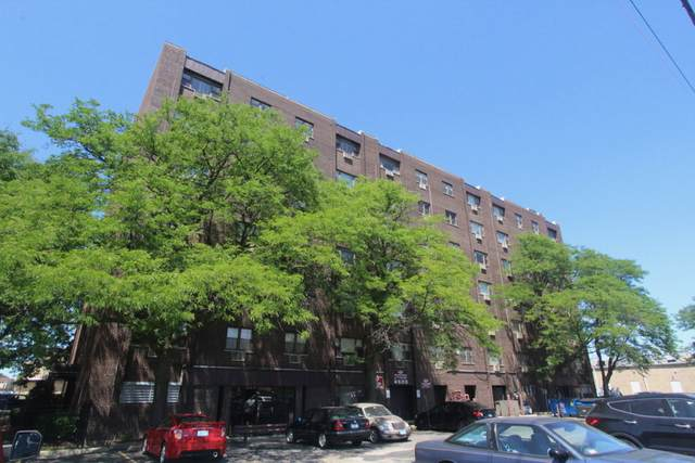4600 N Cumberland Avenue #504, Chicago, IL 60656 (MLS #11217488) :: The Spaniak Team