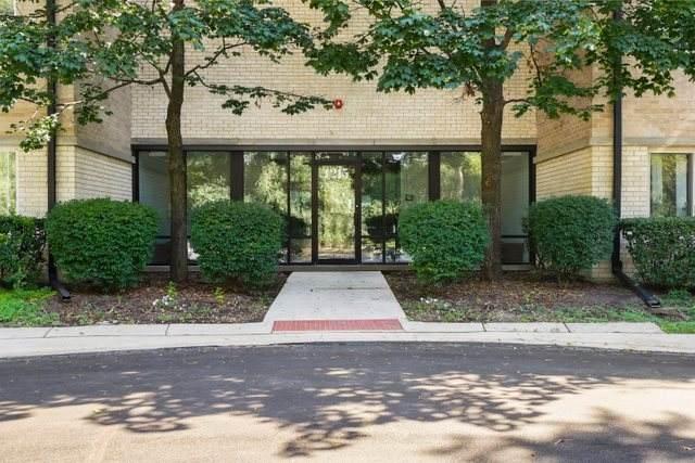 1215 N Waterman Avenue 12-3K, Arlington Heights, IL 60004 (MLS #11220074) :: Touchstone Group
