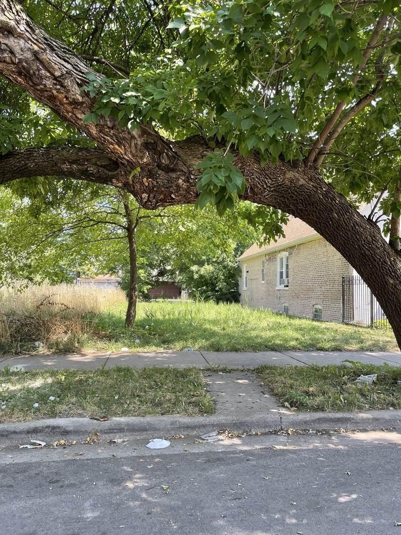 1049 Hamlin Avenue - Photo 1