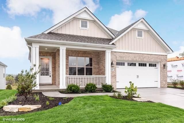 1915 Enclave (Lot 2) Court, Naperville, IL 60564 (MLS #11221981) :: Ryan Dallas Real Estate