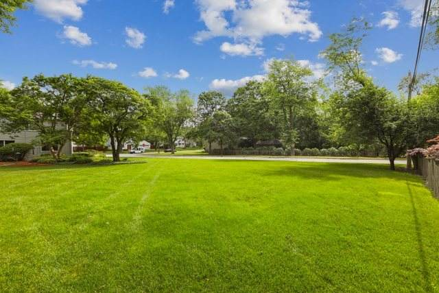 540 N Elizabeth Street, Lombard, IL 60148 (MLS #11222231) :: Angela Walker Homes Real Estate Group