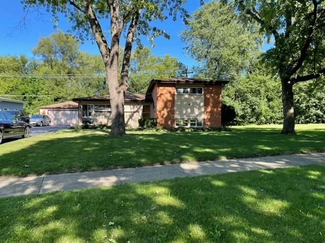 218 W Pleasant Hill Boulevard, Palatine, IL 60067 (MLS #11225501) :: Lewke Partners - Keller Williams Success Realty