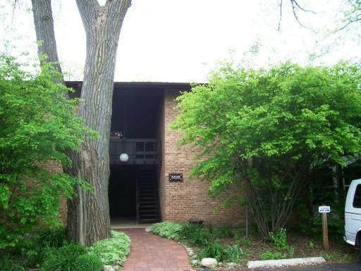 5522 E Lake Drive D, Lisle, IL 60532 (MLS #11231348) :: John Lyons Real Estate