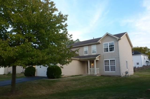 13602 S Kalamazoo Court, Plainfield, IL 60544 (MLS #11233340) :: Littlefield Group