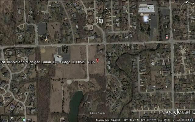 17 Buege Lane, Burr Ridge, IL 60527 (MLS #11240982) :: Littlefield Group