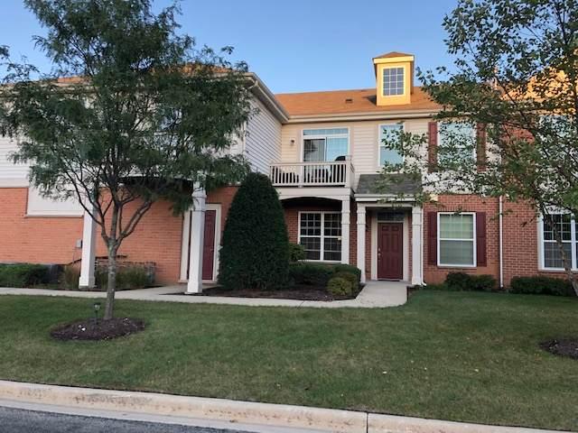 10201 Mulberry Lane B, Bridgeview, IL 60455 (MLS #11244813) :: John Lyons Real Estate