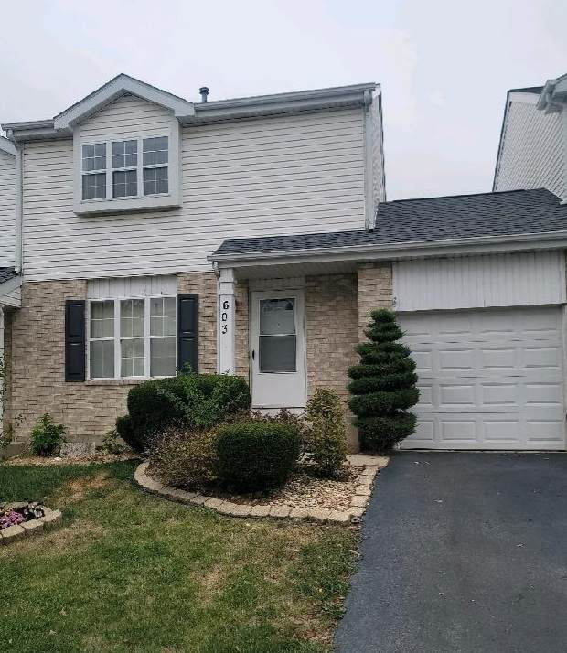 603 Devon Lane, Romeoville, IL 60446 (MLS #11246839) :: Littlefield Group