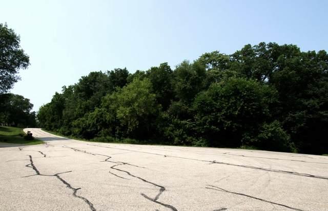 1404 Bradley Court, Spring Grove, IL 60081 (MLS #11248524) :: Suburban Life Realty
