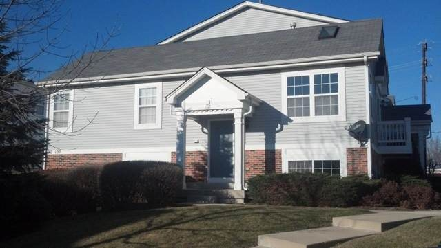 102 W Big Horn Drive #0, Hainesville, IL 60073 (MLS #11248538) :: Littlefield Group
