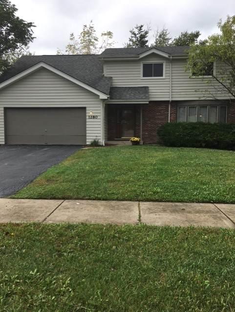 1280 Dairy Lane, Crete, IL 60417 (MLS #11249454) :: John Lyons Real Estate