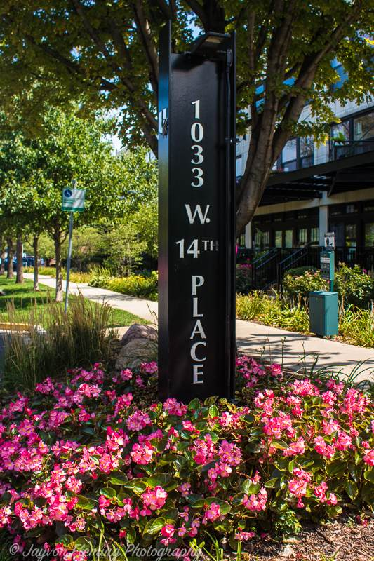 1033 W 14th Place #313, Chicago, IL 60608 (MLS #11249806) :: John Lyons Real Estate
