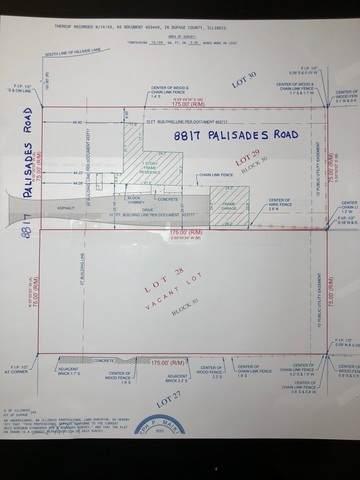 8817 Palisades Road, Burr Ridge, IL 60527 (MLS #11250791) :: Schoon Family Group