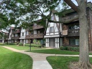 2 Timber Lane #11, Vernon Hills, IL 60061 (MLS #11251190) :: Ryan Dallas Real Estate