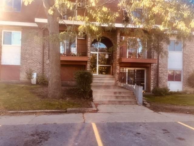 535 Hill Drive #204, Hoffman Estates, IL 60169 (MLS #11254441) :: Ani Real Estate