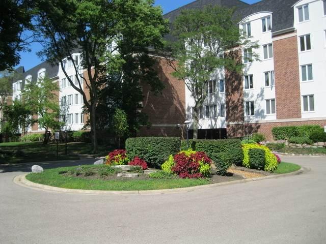 250 Lake Boulevard #255, Buffalo Grove, IL 60089 (MLS #11254580) :: Ani Real Estate