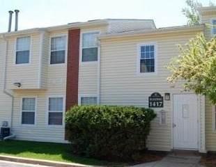 1417 E Wyndham Circle #105, Palatine, IL 60074 (MLS #11254586) :: Ani Real Estate