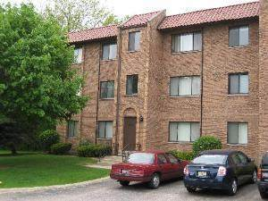 228 Rimini Court, Palatine, IL 60067 (MLS #11255408) :: Littlefield Group