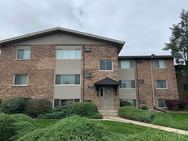 125 Twin Oaks Drive #116, Joliet, IL 60431 (MLS #11255719) :: O'Neil Property Group