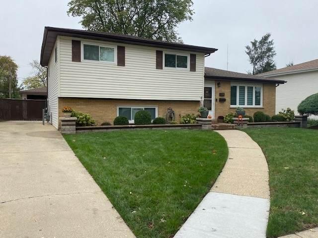 134 S Vista Avenue, Addison, IL 60101 (MLS #11256279) :: The Wexler Group at Keller Williams Preferred Realty