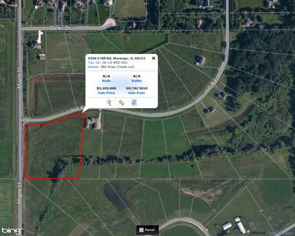 9206 S Hill Road, Marengo, IL 60152 (MLS #08906491) :: Littlefield Group
