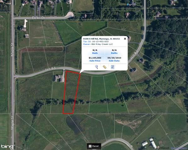 9106 S Hill Road, Marengo, IL 60152 (MLS #08906493) :: Littlefield Group