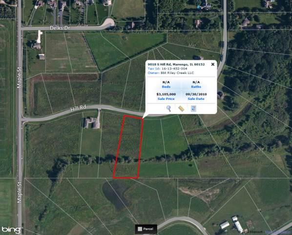 9018 S Hill Road, Marengo, IL 60152 (MLS #08906495) :: Littlefield Group