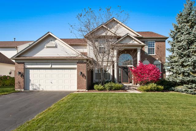 4630 Whitehall Lane, Algonquin, IL 60102 (MLS #09356887) :: Baz Realty Network | Keller Williams Preferred Realty