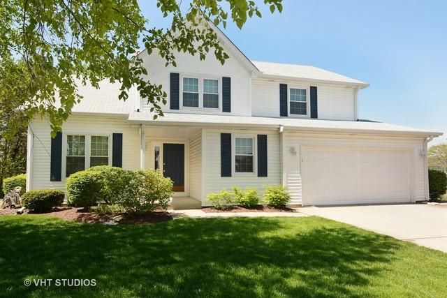 455 Thistle Lane, Lake Zurich, IL 60047 (MLS #09627560) :: The Jacobs Group